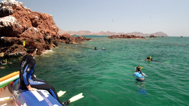 Snorkelers in the water in Baja California among brown rocks