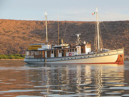 westward baja small ship sits anchored on calm water on a sunny day