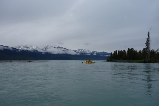 Guests from a small ship cruise in alaska kayaking.