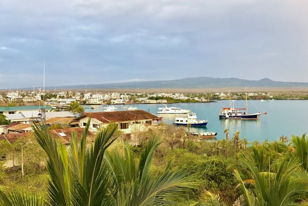 Puerto Ayora on Santa Cruz Island in the Galapagos with green plans and many small ships at anchor