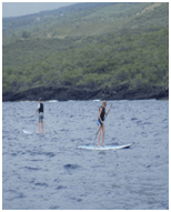 Two paddleboarders navigating the shoreline of Hawaii