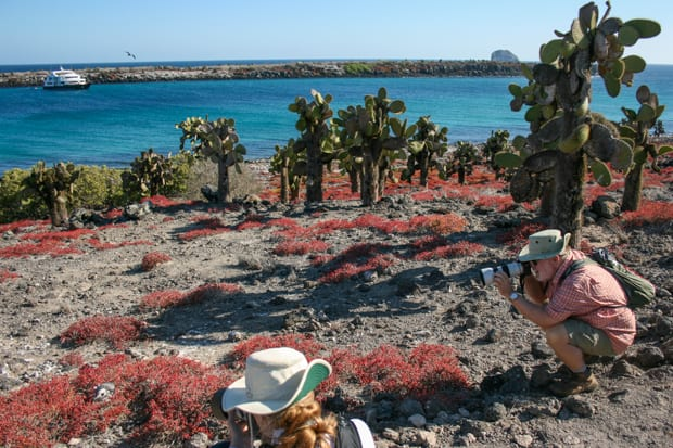 Travel photograpers taking pictures of Galapagos wildlife on volcanic soil with small ship and cacti in background