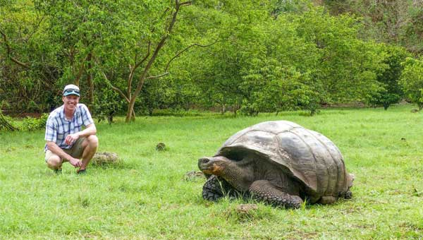 Young man kneels at a respectable distance beside a giant tortoise in the Galapagos Islands on a custom tour connecting the Amazon, with bright green grass and forest behind.