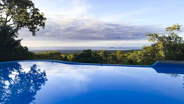 View from an infinity pool above the trees of the Galapagos Islands