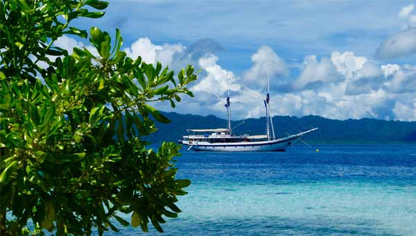 A two-masted Indonesia sailing ship sits at anchor in bright blue water with green tree leaves in the foreground