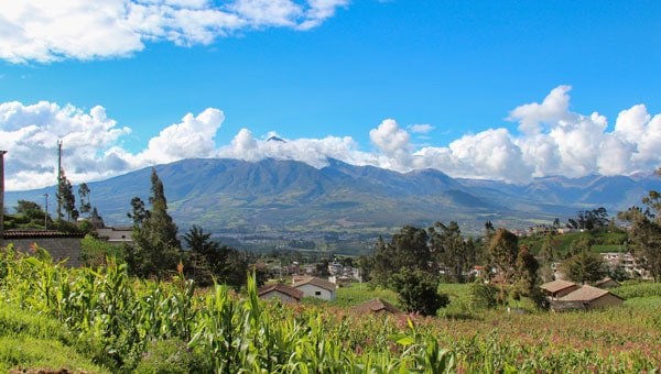 Andes Highlands village with terra cotta roofs, scattered trees, bright green fields of corn stalks & red flowers on a sunny day during an Ecuador tour.