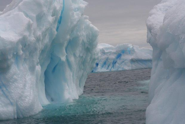 Icebergs in Antarctica seen from a small ship cruise.