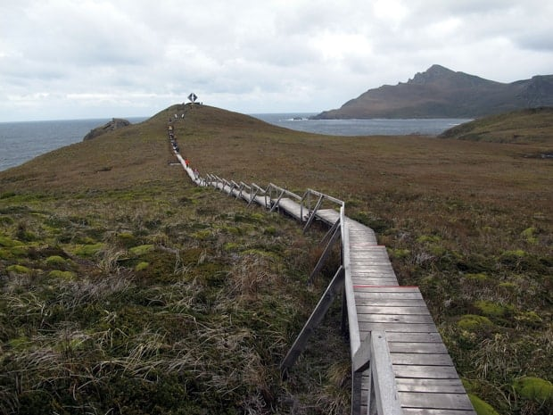 Group hiking on a boardwalk to a viewpoint in Cape Horn.
