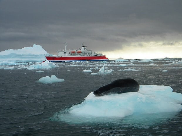 Small expedition cruise ship in Antarctica with sea lion resting on an iceberg in the foreground.
