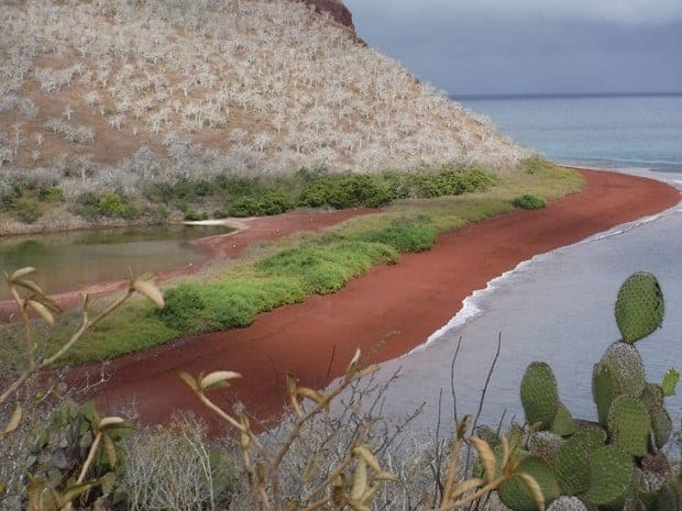 Hiking above a red sand beach in the Galapagos on a land tour from a small ship cruise.