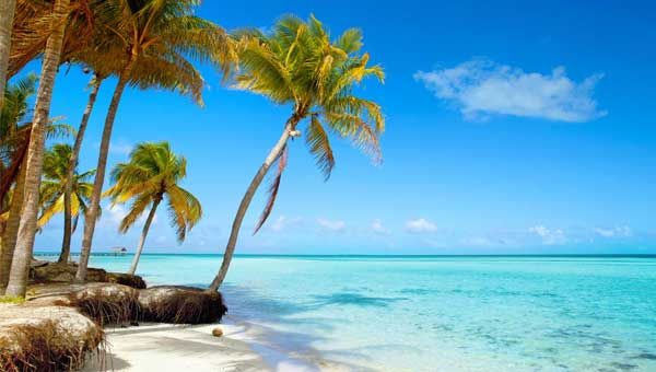 tropical island seen during belize sailing vacations with white sand and palm trees overlooking aqua water and barrier reef with blue sky.