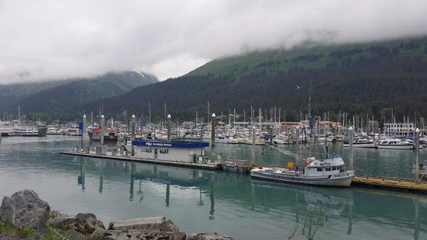 Harbor of Seward, Alaska with many fishing and day boats parked.