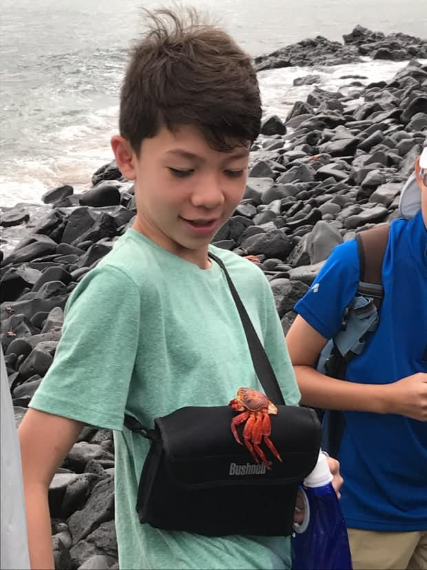 Child on a land excursion from their small ship cruise with a red crab on his camera case.