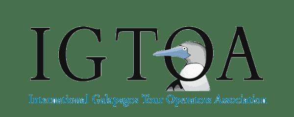 International Galapagos Tour Operators Association (IGTOA) logo with blue-footed boobie cartoon.