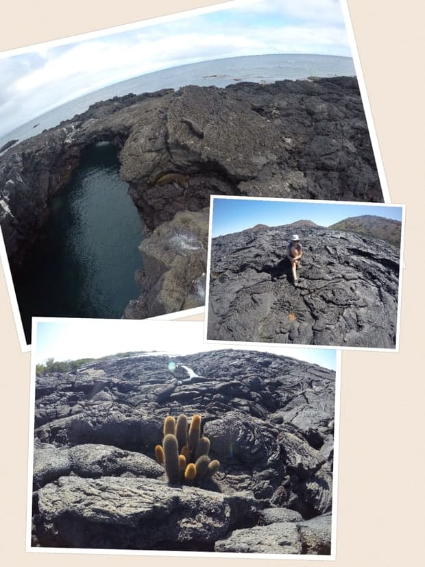 collage of galapagos scenery and a female solo traveler on a sunny day
