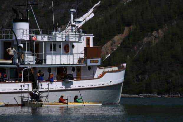 Guests on the Sea Wolf kayaking straight from their small ship in Alaska.
