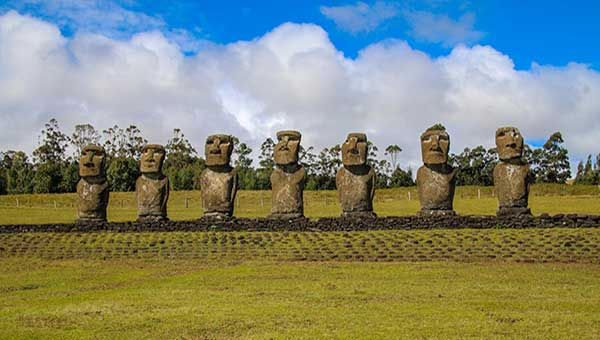 A line of moai stone statues with big heads, seen in a field of low-cut green grass on a sunny day during a trip to Chile.