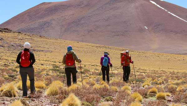 Guide leads 3 guests on a hike through high alpine desert on a sunny day during a Chile tour.