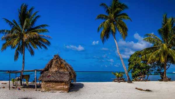 White-sand beach with palm trees & small thatch-roofed hut with snorkel gear drying in the sun during a Pacific Island vacation.