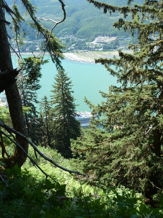 Hike up to Mt. Roberts with a view of a large cruise ship and city view below.