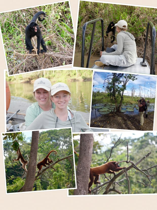 Collage of photos from a small ship cruise in the Amazon including monkeys, lily pads, and smiling people.